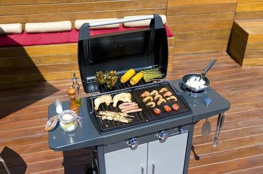 Barbecue à gaz Campingaz Série 2 Classic EXS Vario