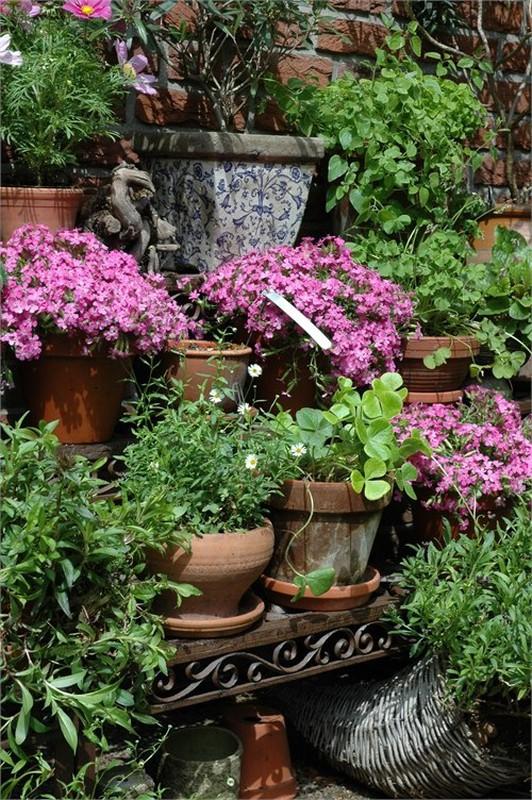Estanteria rectangular de forja para plantas 80 x 50 x 66 - Estanteria para plantas ...